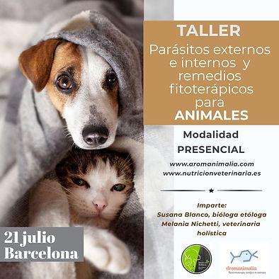 taller_parásitos.jpg