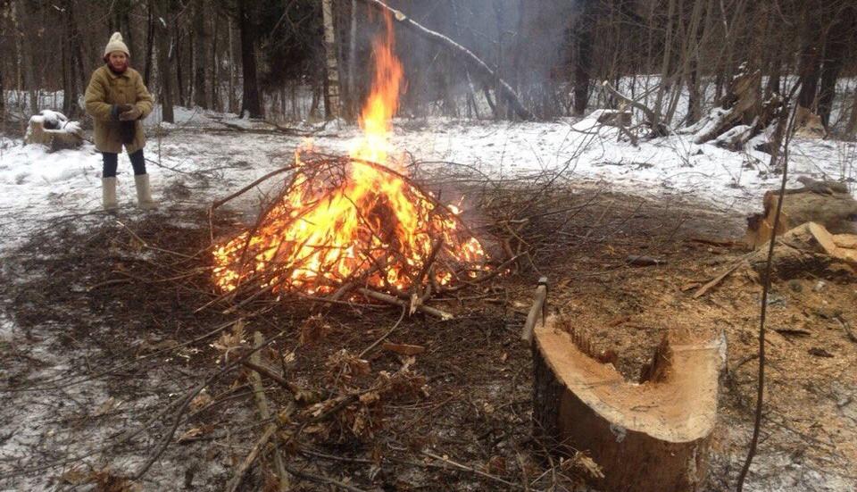 Рубка леса!