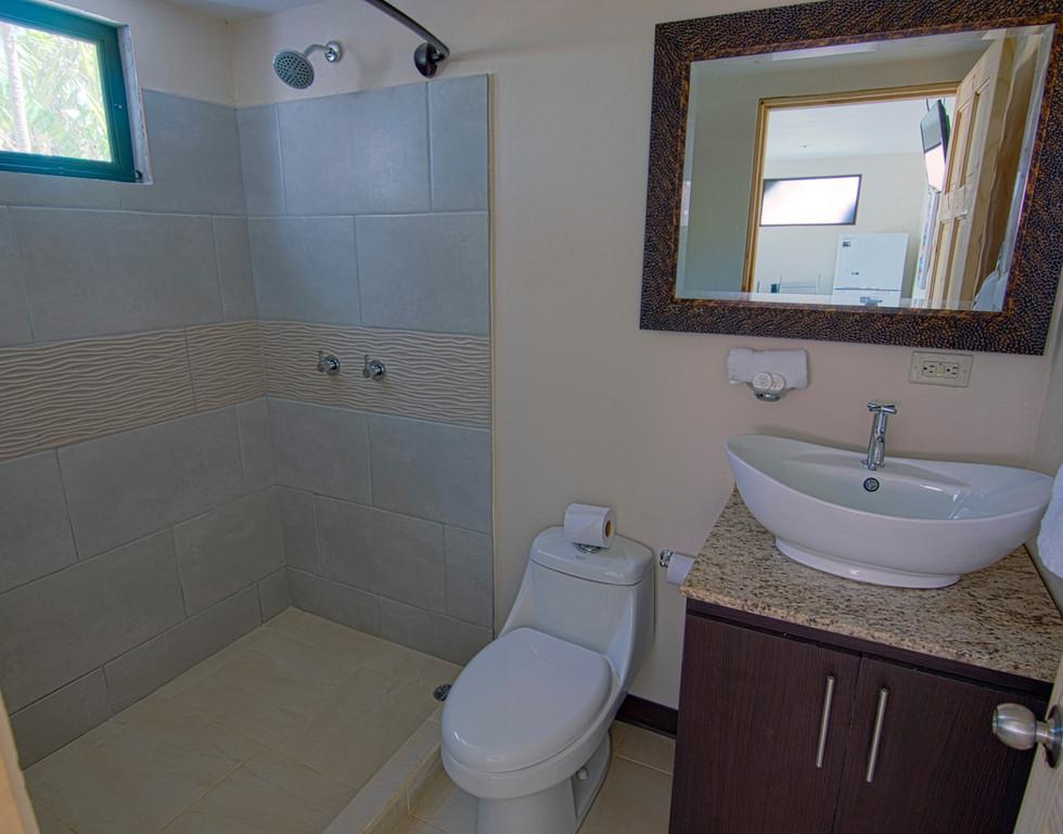 HM SV1 #5 Bathroom.jpg