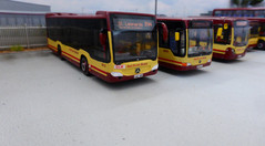 Brand new Citaro G have just been delivered on trade plates