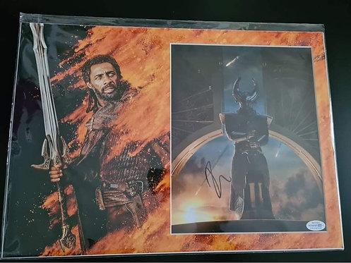 Signed Authentic Idris Elba Heimdall ACOA Picture