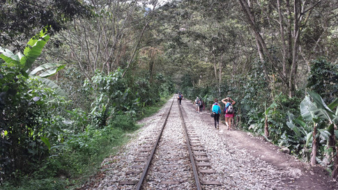 Nos trilhos a caminho de Machu Picchu/ Peru