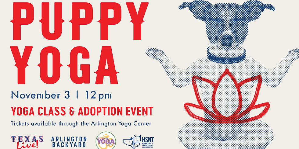 Puppy Yoga at Texas Live!