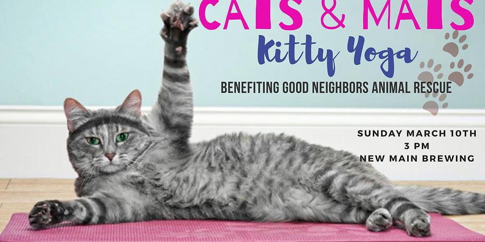 Cats & Mats: Kitty Yoga
