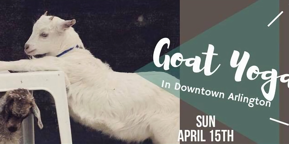 Goat Yoga in Downtown Arlington (Sold Out)