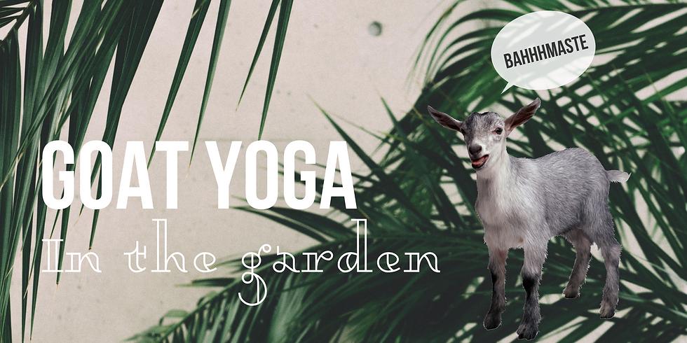 SpringFest: Goat Yoga in the Garden