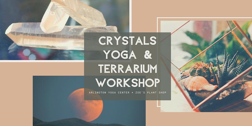 Crystals Yoga & Terrarium Crafting