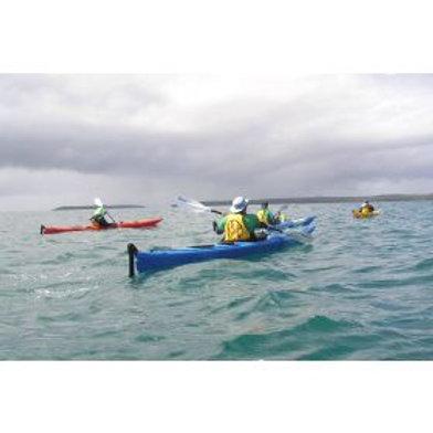 Kayak - Salamander Sea Kayak