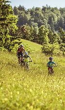 Lifestyleandleisure_Kids_Bike.jpg