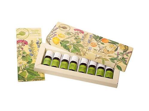Aromatherapy Essential Oils Kit