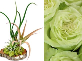Inspiration: Floral Color & Fashion!