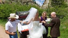 Welcome to Weddings & Events 101 and beyond!