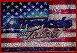 America's Got Talent Logo.JPG