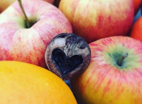 Über die Liebesbeziehung von Meditation und Kochen