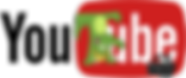 YouTube logo o Arne_edited.png