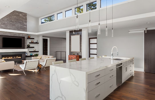 Beautiful Modern Kitchen and Living Room