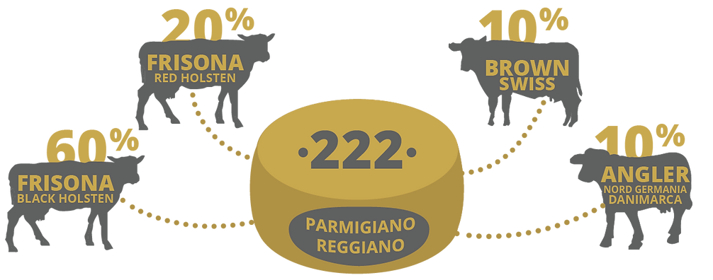 infografica_caseificio_01.png