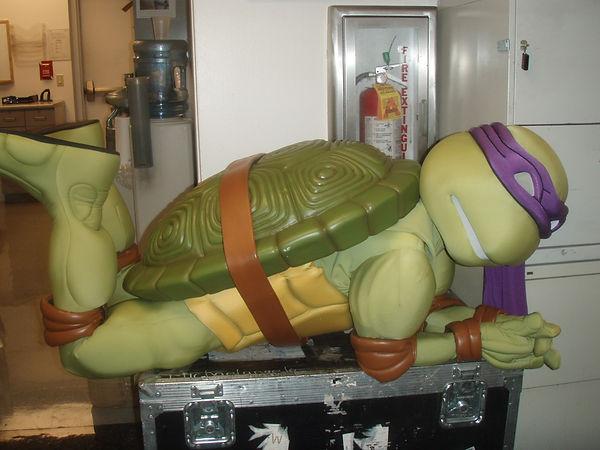being_a_turtle_is_tiring.jpg