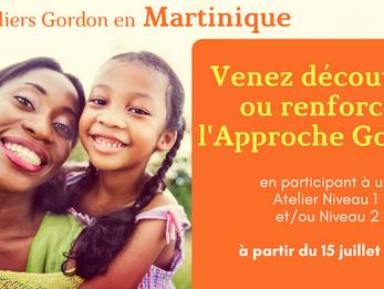 Niveau 1 et Niveau 2 en Martinique cet été !