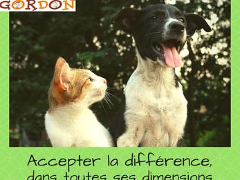 Accepter la différence - dans toutes ses dimensions