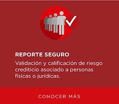 Reporte crediticio de personas y empresas