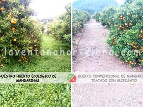 EL GLIFOSATO. El herbicida más utilizado a nivel mundial. ¿La sociedad esta informada?