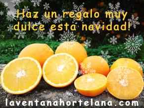 Regala Naranjas ecológicas de Valencia.
