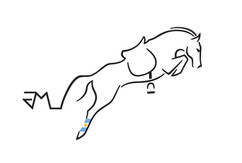 3-Larocca-HorseJockey-Logo.jpg