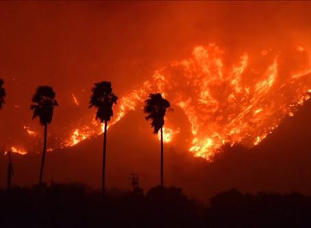 Lightning a major cause of wildfires, reveals NASA study