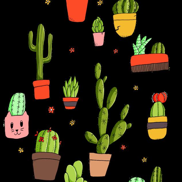 Cacti flash