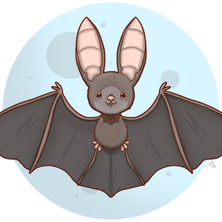 Bat Friend