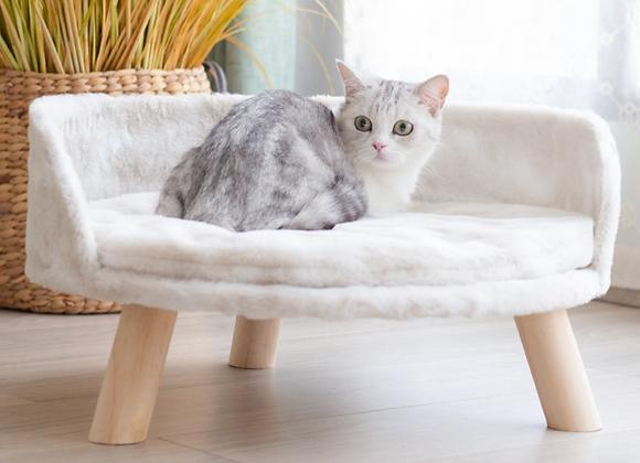 猫用ベッド マットレスタイプ