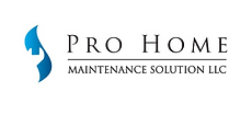 Pro Home logo 2.png
