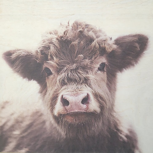Custom Highland Cow Print