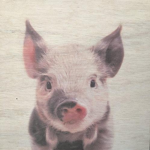 Custom Pig Print