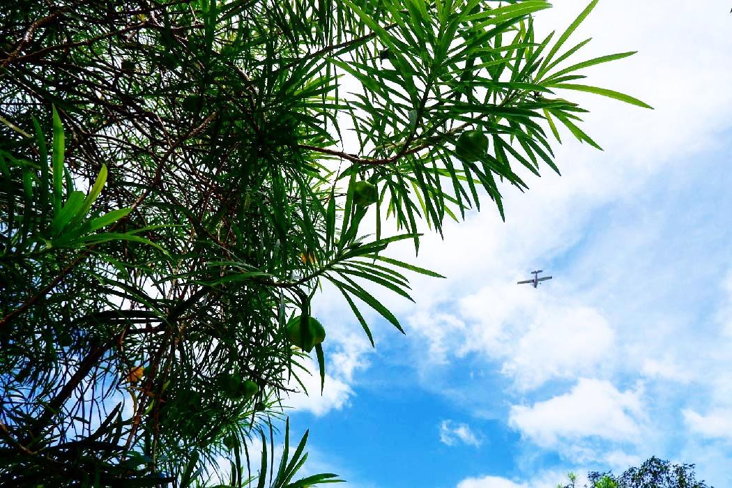Manila Memorial Park-Bulacan