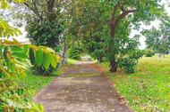 Manila Memorial Park View in Bulacan
