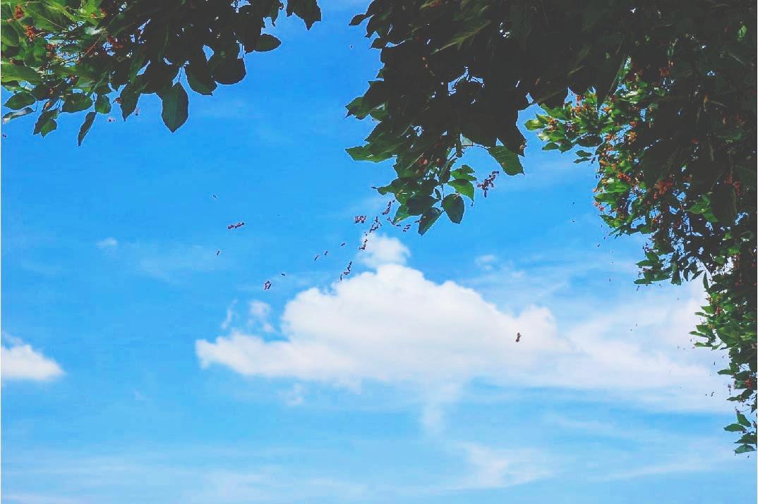 Clear Sky in Manila Memorial Bulacan