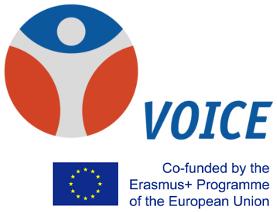 voicesfortruthanddignity.eu