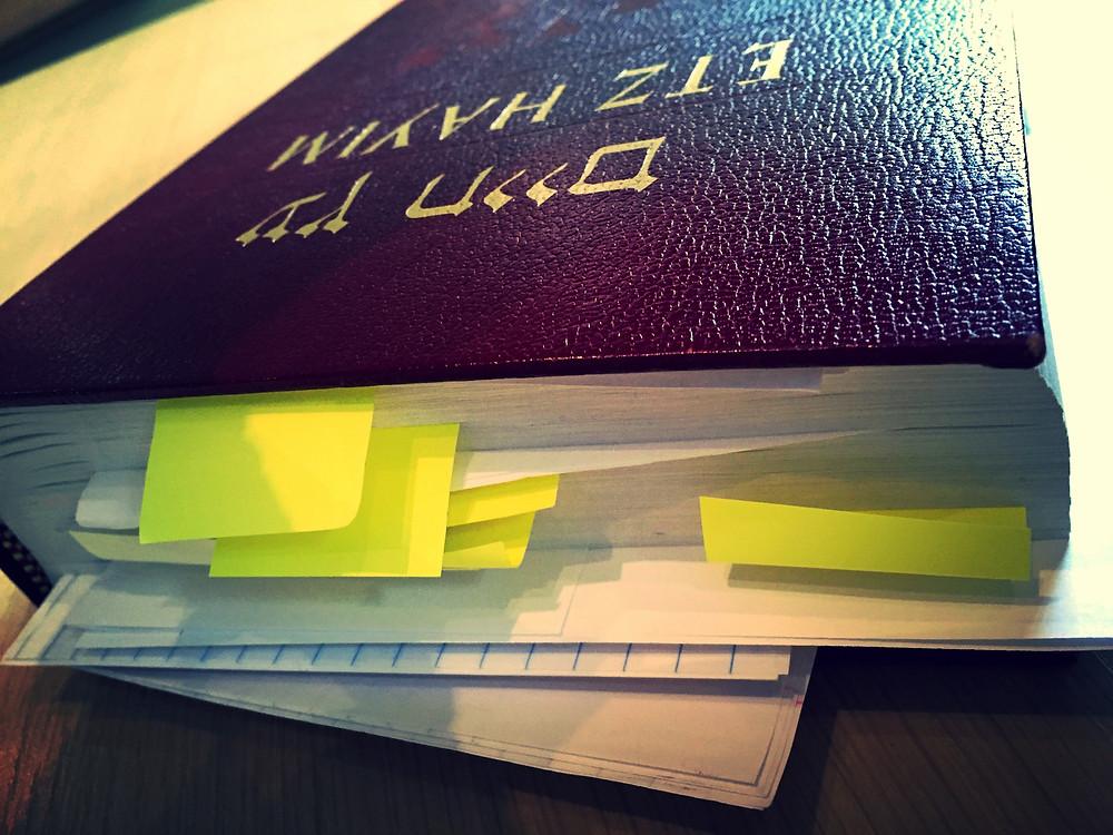 Torah Study