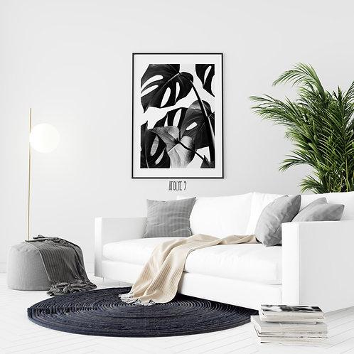 Monstera Yaprak/Siyah Beyaz Poster