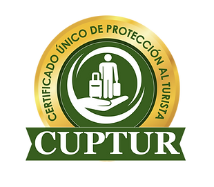 logo cuptur-02.png