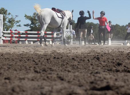 PHOTOS: UGA equestrian holds preseason scrimmage