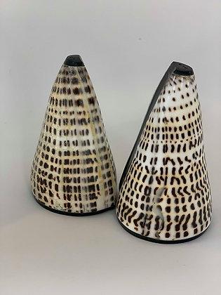Shell Salt & Pepper Shakers