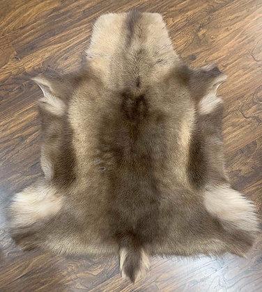 Reindeer Hide- 008