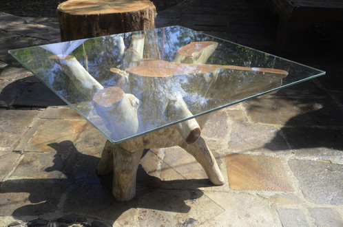 Tree Root Coffee Table With Square Glass