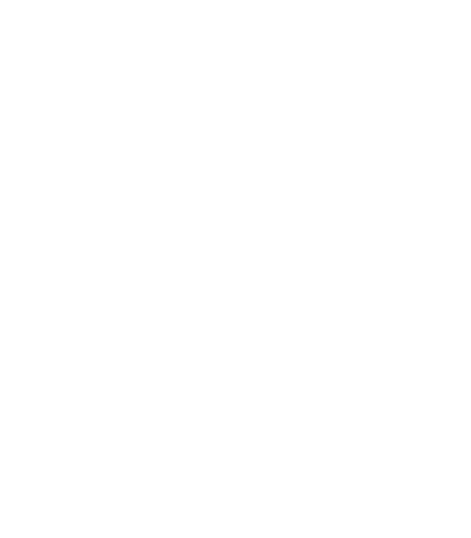Baifest Burlada