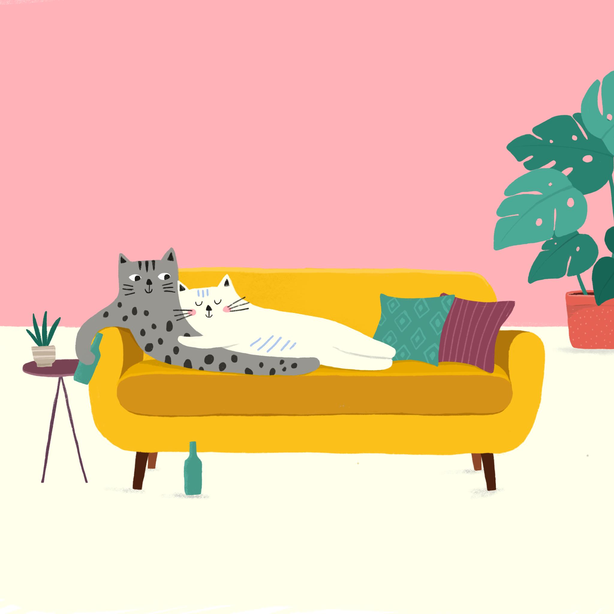Lazy_Cat_Valentine