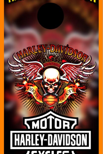 Harley Flames/Skull