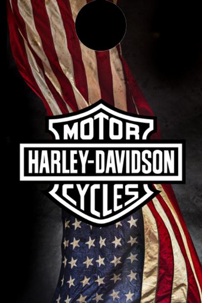 Harley Flag 02
